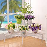 YQQ Corner Flower Pots Ladder Rack Iron Art Multilayer Balcony Flower Stand Living Room Plant Shelf Floor Stand Flower Display Stand (Color : White)