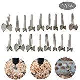 Woodworking Forstner Drill Bits, HEHEINC Wood Boring Bit Carbide Steel Drilling Tool Titanium Coated Alloy Steel Wood Boring Hole Saw Set for Wood Plastic Plywood