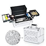 Hotrose Extra Large Space Storage Beauty Box Make up Nail Jewelry Cosmetic Vanity Case (Butterfly Pattern, Silver)