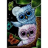 DIY 5D Diamond Painting by Number Kits, Full Drill Crystal Rhinestone Embroidery Pictures Arts Craft for Home Wall Decor Gift,Owl looking at Butterfly